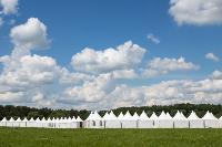 «Дикая мята» состоится! Что ждет гостей на фестивале, Фото: 36