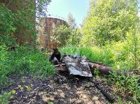 В Пролетарском районе Тулы ликвидируют разлив мазута, Фото: 11
