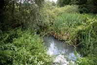 В реку Иншинку несколько лет стекает канализация, Фото: 2