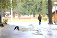 Осень, Фото: 4