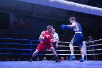 В Туле прошли финальные бои Всероссийского турнира по боксу, Фото: 14