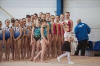 Первенство ЦФО по спортивной гимнастике, Фото: 33