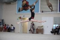Соревнования по спортивной гимнастике на призы Заслуженных мастеров спорта , Фото: 73