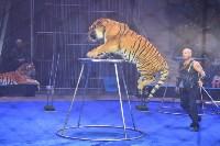 Цирковое шоу, Фото: 105