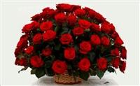Анастасия, сеть магазинов цветов, Фото: 3