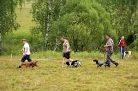 Выставка охотничьих собак под Тулой, Фото: 39