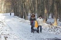 Центральный парк культуры и отдыха им. Белоусова. Декабрь 2013, Фото: 9