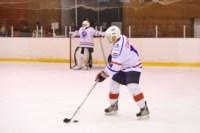 Легенды советского хоккея в Алексине., Фото: 106