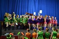 Открытый Чемпионат Тульской области по черлидингу, Фото: 63