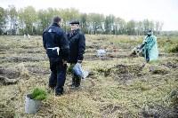 В Веневском районе высажено 24 тысячи сосен, Фото: 14