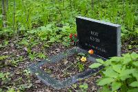 Кладбище домашних животных в Туле, Фото: 1