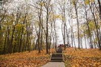 Платоновский парк, Фото: 3