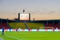 Арсенал - Амкар. 23.11.2014, Фото: 88