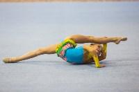Открытый кубок региона по художественной гимнастике, Фото: 44