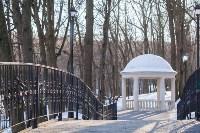 Морозное утро в Платоновском парке, Фото: 34
