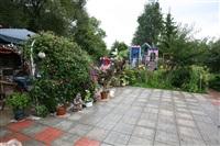 Домик в Плавске, Фото: 6