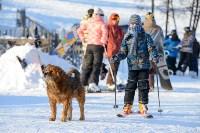 Первый этап чемпионата и первенства Тульской области по горнолыжному спорту, Фото: 131