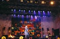 закрытие проекта Тула новогодняя столица России, Фото: 66