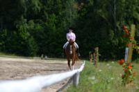 В Ясной поляне стартовал турнир по конному спорту, Фото: 45