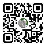 Мастер-класс по грумингу в Туле: как профессионально заботиться о своем питомце, Фото: 24