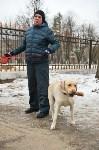 В Центральном парке прошёл рейд по выявлению нарушений выгула собак, Фото: 21