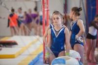 Первенство ЦФО по спортивной гимнастике, Фото: 92