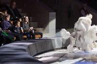 Тульский цирк, Фото: 30