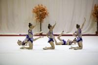 """Соревнования по художественной гимнастике """"Осенний вальс"""", Фото: 141"""