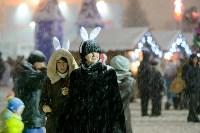 На площади Ленина прошло закрытие главной городской ёлки, Фото: 100