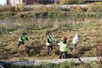 В Туле берега рек очистили от мусора, Фото: 18
