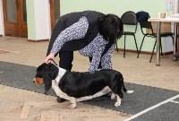 """Выставки собак в ДК """"Косогорец"""", Фото: 10"""