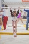 Первенство ЦФО по спортивной гимнастике, Фото: 121