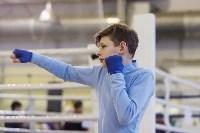 Чемпионат и первенство Тульской области по боксу, Фото: 8