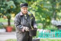 Тульская городская УК сажает деревья, Фото: 15