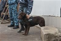 В ходе зачистки на Центральном рынке Тулы задержаны 350 человек, Фото: 36