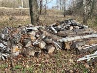 В лесу в Узловском районе обнаружена свалка ртутных ламп, Фото: 11