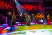 Тульский цирк, Фото: 64