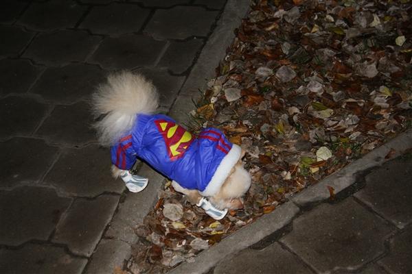 Кузя-супермен!