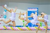 III Всебелорусский открытый турнир по эстетической гимнастике «Сильфида-2014», Фото: 18