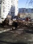 Поваленное дерево на ул.Октябрьской, Фото: 2