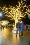 В Туле завершились новогодние гуляния, Фото: 56