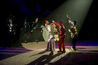 Шоу фонтанов «13 месяцев» в Тульском цирке – подарите себе и близким путевку в сказку!, Фото: 62
