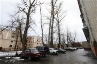 Аварийные деревья в тульских дворах, Фото: 13