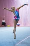 Соревнования по художественной гимнастике 31 марта-1 апреля 2016 года, Фото: 58