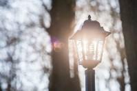 Морозное утро в Платоновском парке, Фото: 32