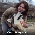 животные , Фото: 14