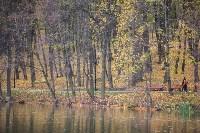 Платоновский парк, Фото: 34