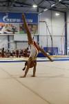 Спортивная гимнастика в Туле 3.12, Фото: 139