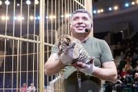 В Тульском цирке родился тигролев, Фото: 25