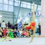 Кубок общества «Авангард» по художественной гимнастики, Фото: 54